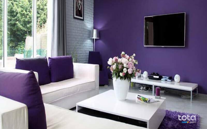 Màu tím màu sơn đẹp nhất trong việc thể hiện sự sang trọng và lãng mạn